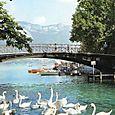 """le """"Pont des Amours"""""""